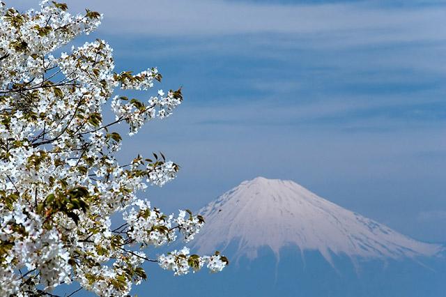 Гора Японии