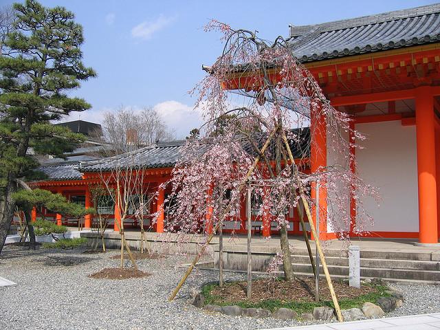 Тиба (Chiba) – город на острове Хонсю, столица префектуры Тиба. Возник как небольшое поселение китобоев, сегодня там установлен памятник киту. В 1992 году получил статус города. В средние века город был феодальным замком и родовым владением князя  Тиба.
