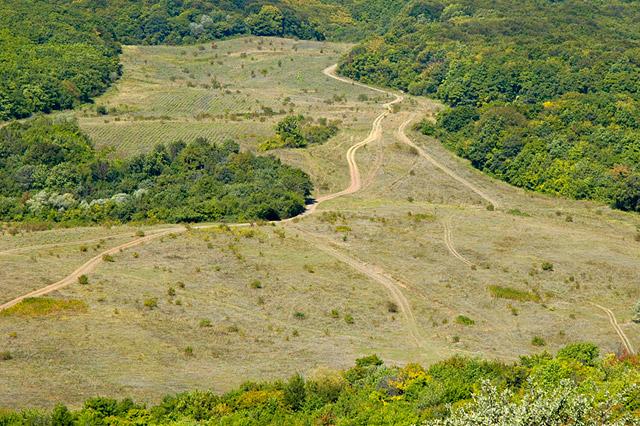 Крымская равнина
